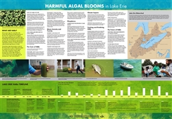 Harmful Algal Blooms in Lake Erie